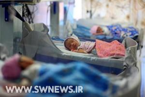 Inside India's First Bonafide Baby Factory